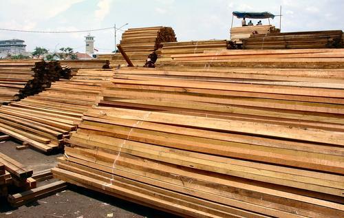 Wood from Borneo... (Dsc03501)