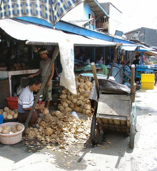 Coconut seller in small fishing village (Dsc03517)