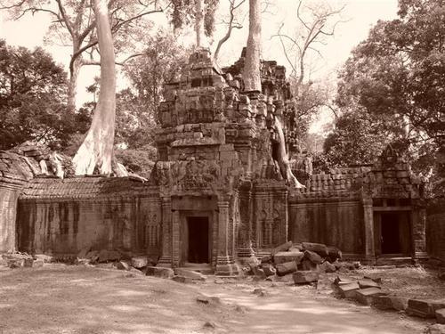 Ta Phrom (Dsc02960)