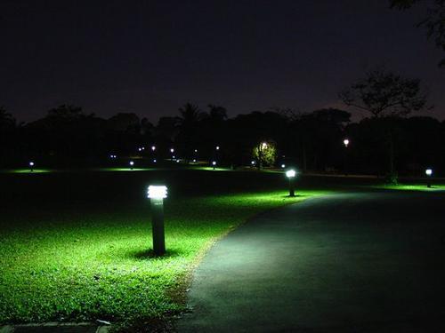 Botanic Gardens at Night (Dsc03226)